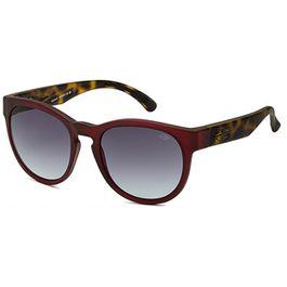 oculos-solar-mormaii-m0010c1333-ventura